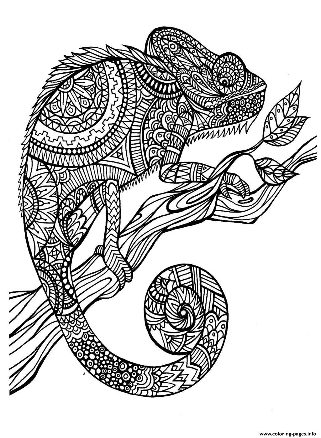 Adult Cameleon Patterns Coloring Pages Printable
