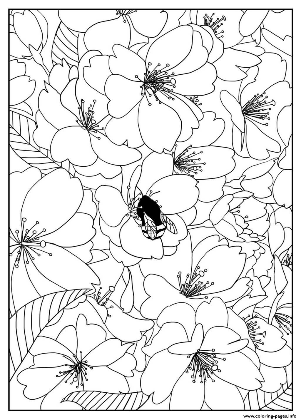 best cherry blossom tree coloring pages gallery printable