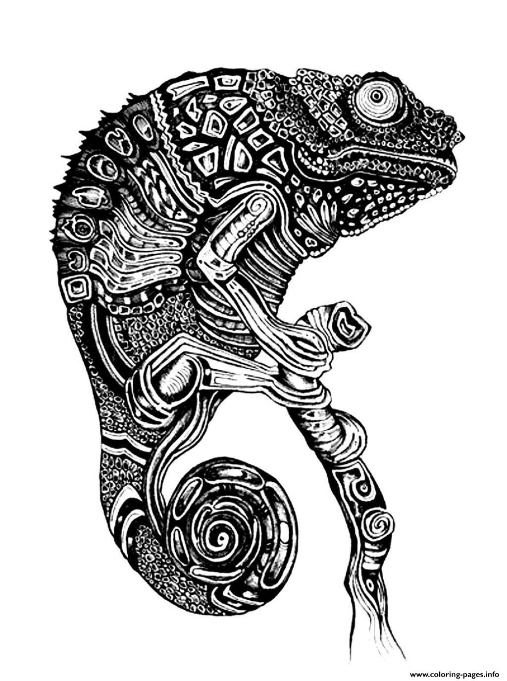 difficult cameleon coloring pages printable
