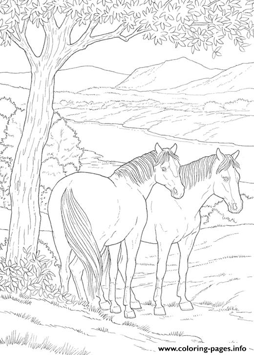 Friendly Educational Horse Sbf8b coloring pages
