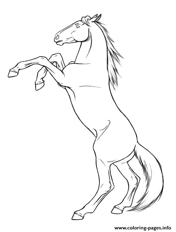 Rearing Horse S8dcc Coloring Pages