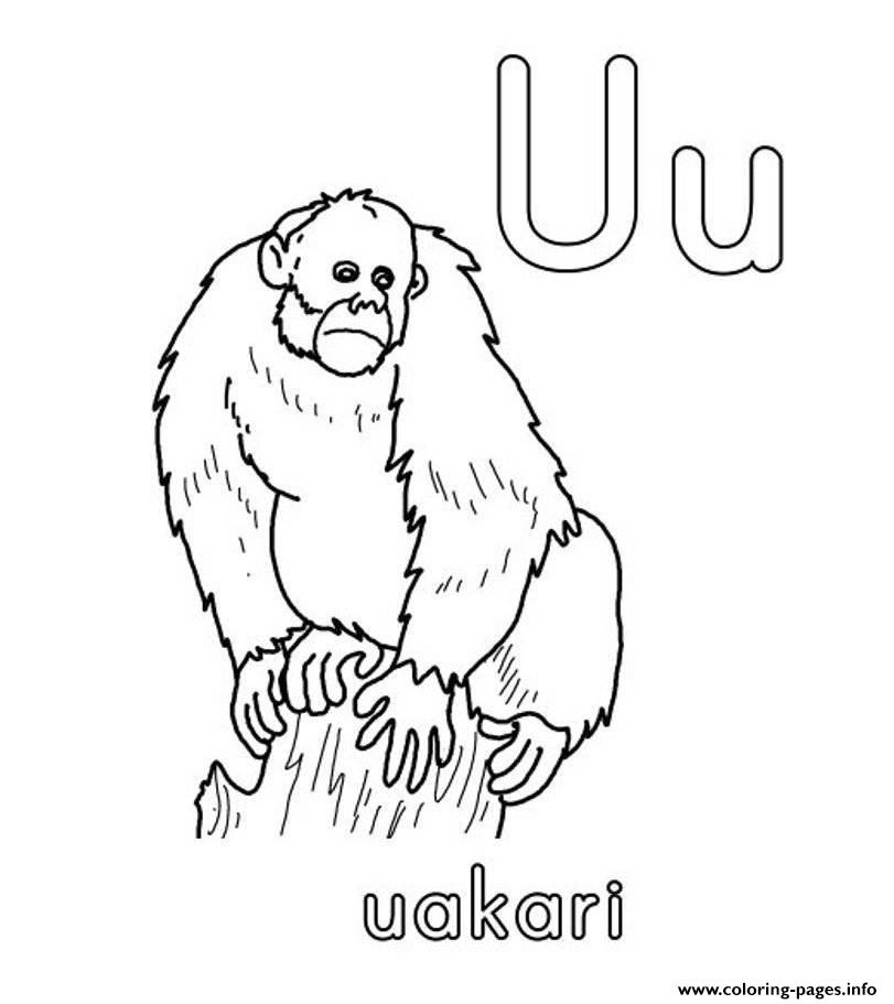 uakari coloring pages - photo #5