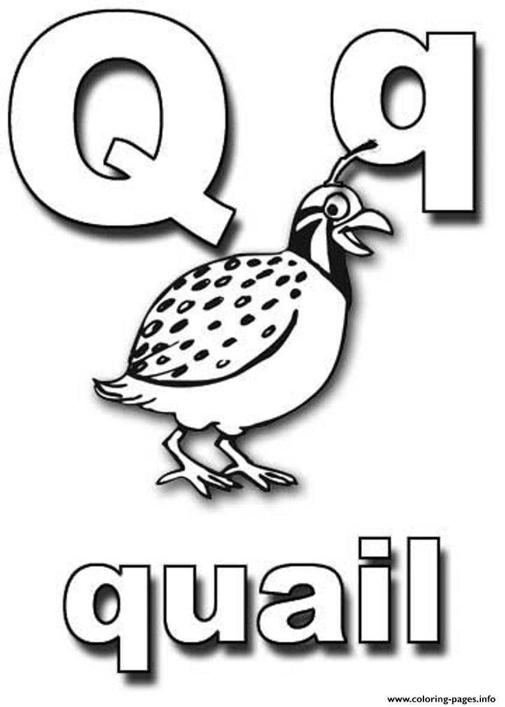 Quail alphabet s0053 coloring pages printable