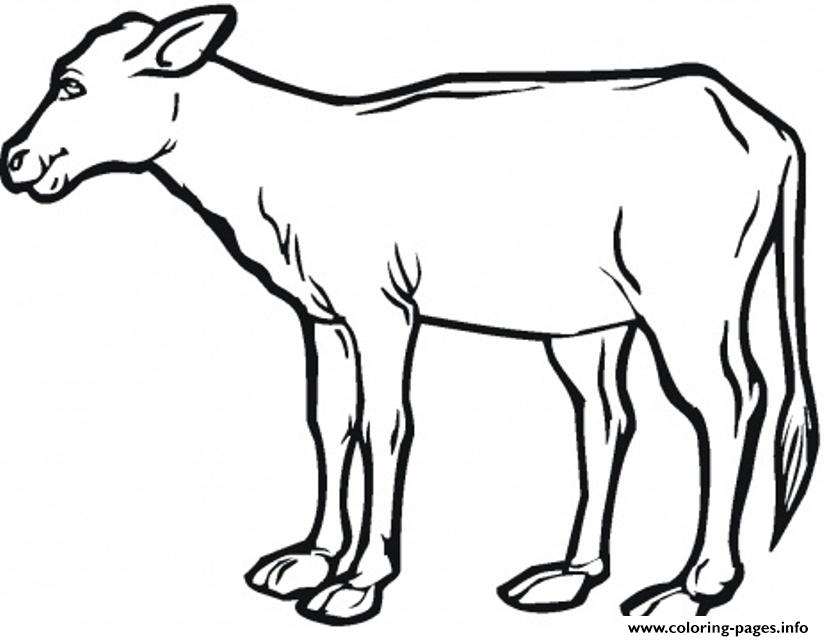bird coloring pages realistic cows - photo#2