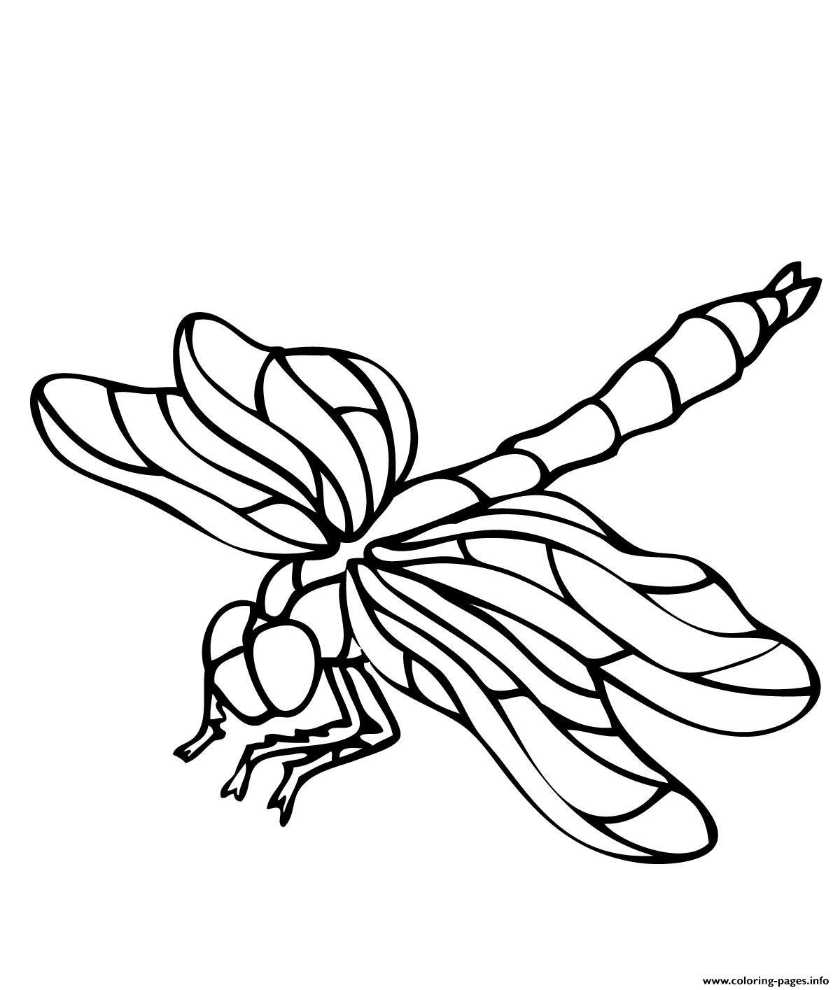 Printable Dragonfly S Of Animalse7ad