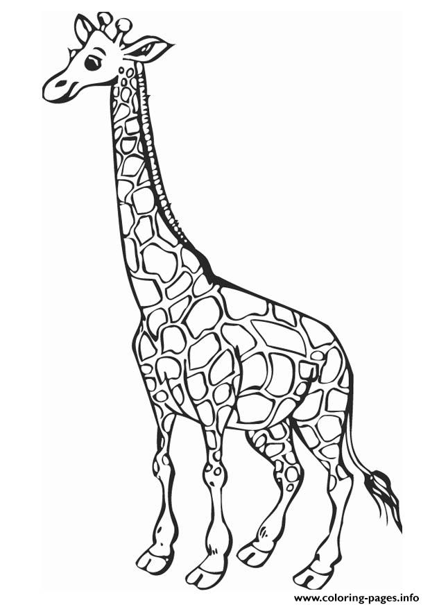 Sweet Giraffe Animal Coloring Pages7bed Pages Printable
