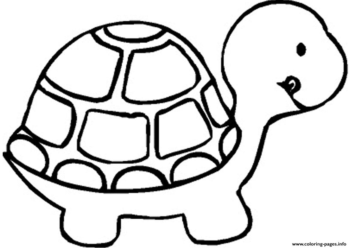 Turtle Preschool S Zoo Animalsabd8 Coloring Pages