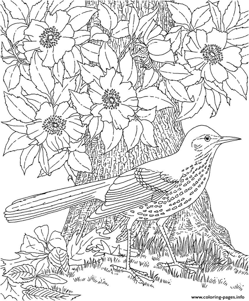 cool colouring for adult 2016 coloring pages - Cool Colouring In Pictures