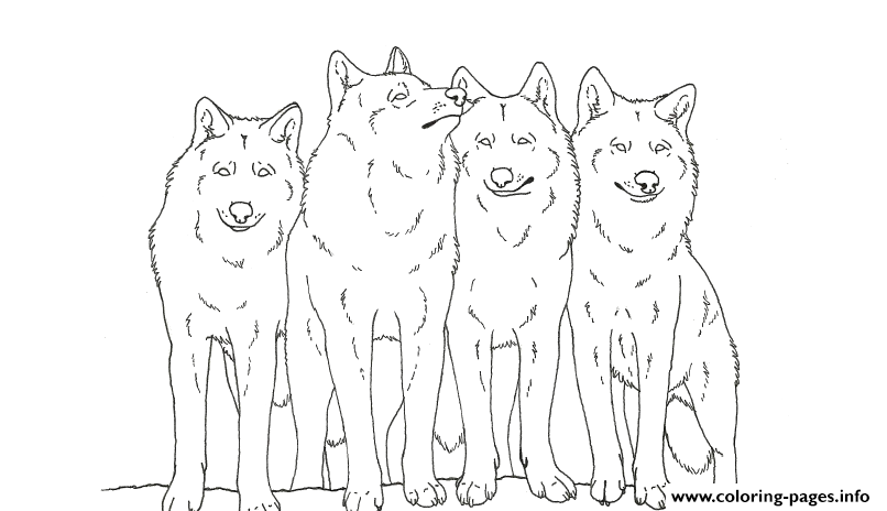 Animal Wolf S Printable coloring pages