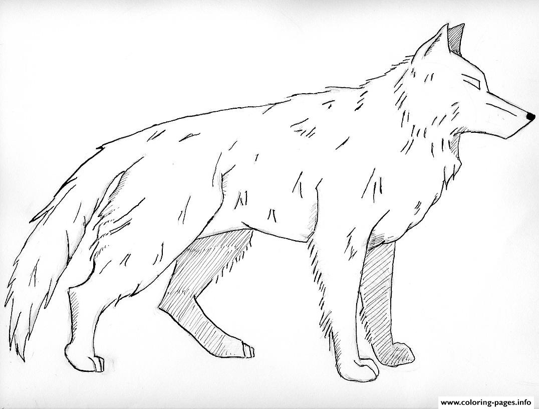 white wolf Coloring pages Printable