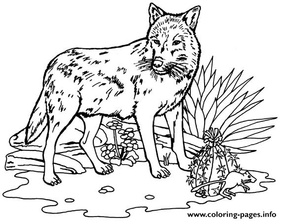 Wolf Activities Coloring Pages