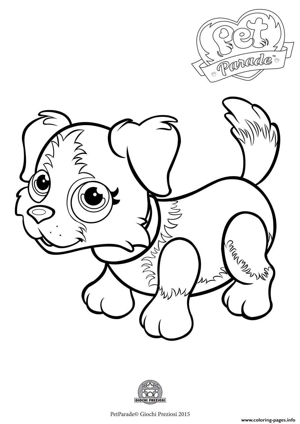 Pet Parade Cute Dog Border Collie