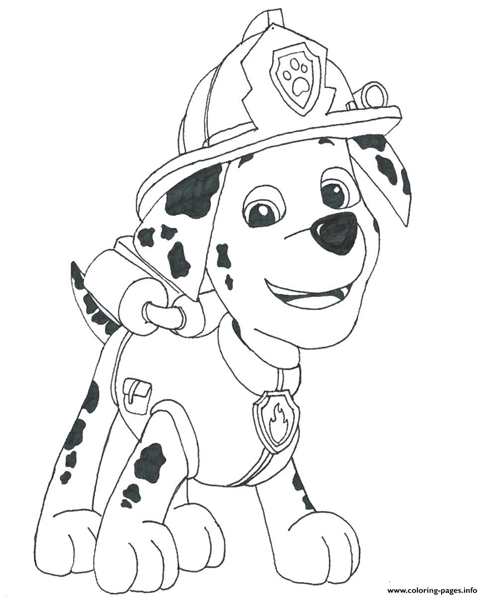 Paw Patrol Marshall Draw Coloring Pages Printable