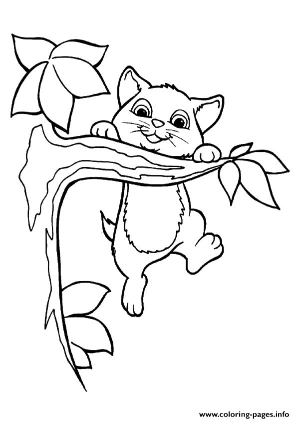 The kitty playing on the tree kitten Coloring pages Printable