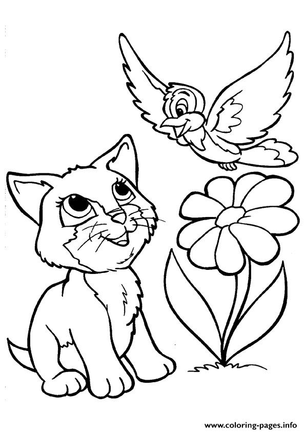 The kitty playing with a bird kitten Coloring pages Printable