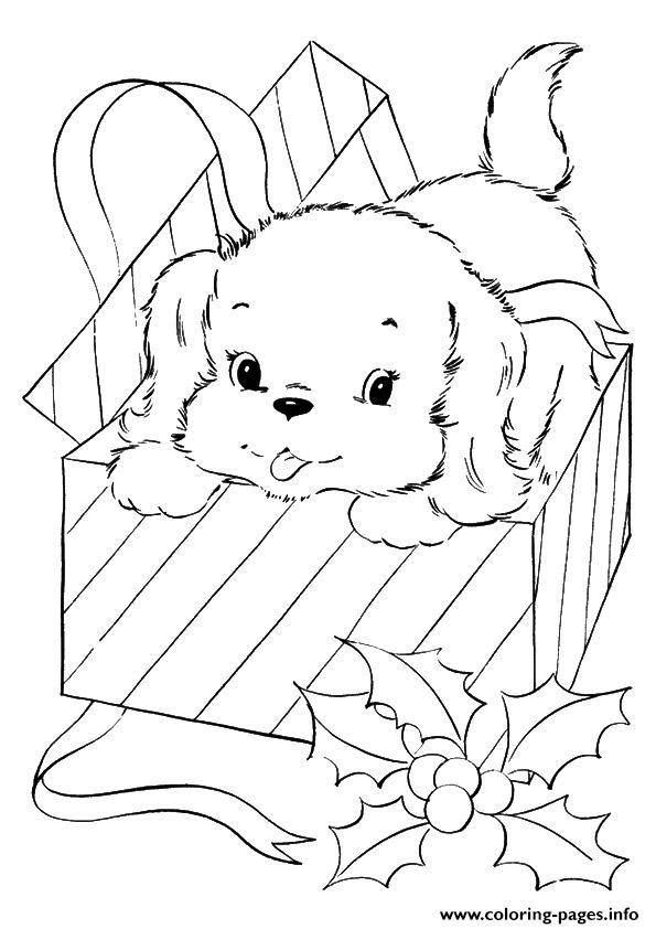 The A Pup Coming Out Of Christmas Gift Puppy Coloring Pages Print Download