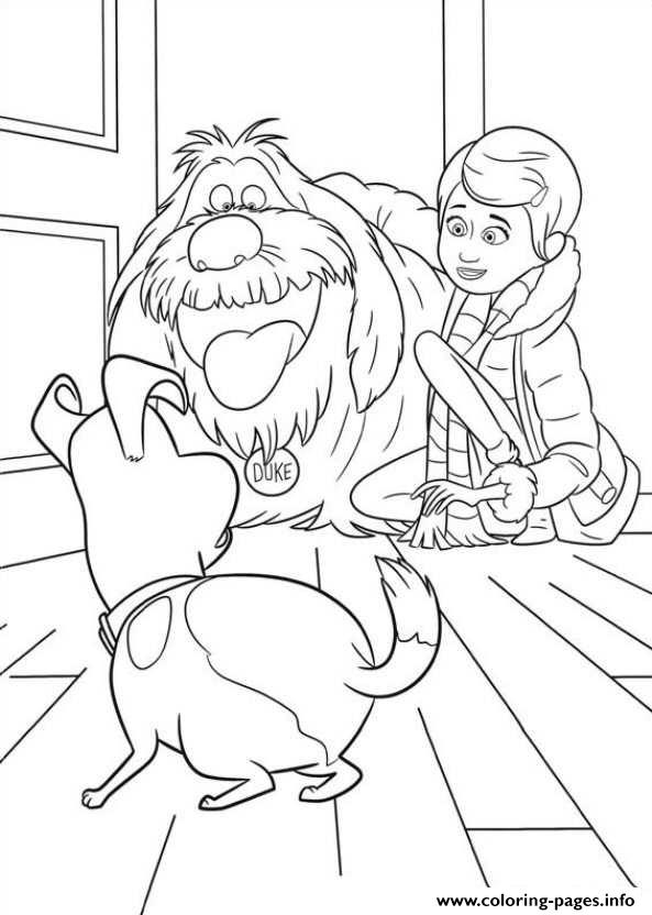 Duke Surprise Max Secret Life Of Pets Printable Coloring Pages Book 14101 on scary cat printables