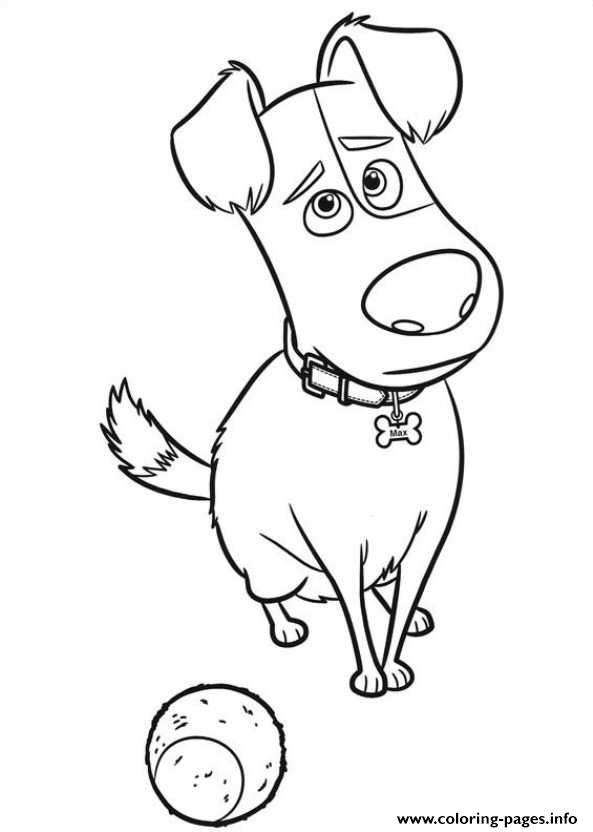 Max Is Sad With A Ball Secret Life Of Pets Coloring Pages