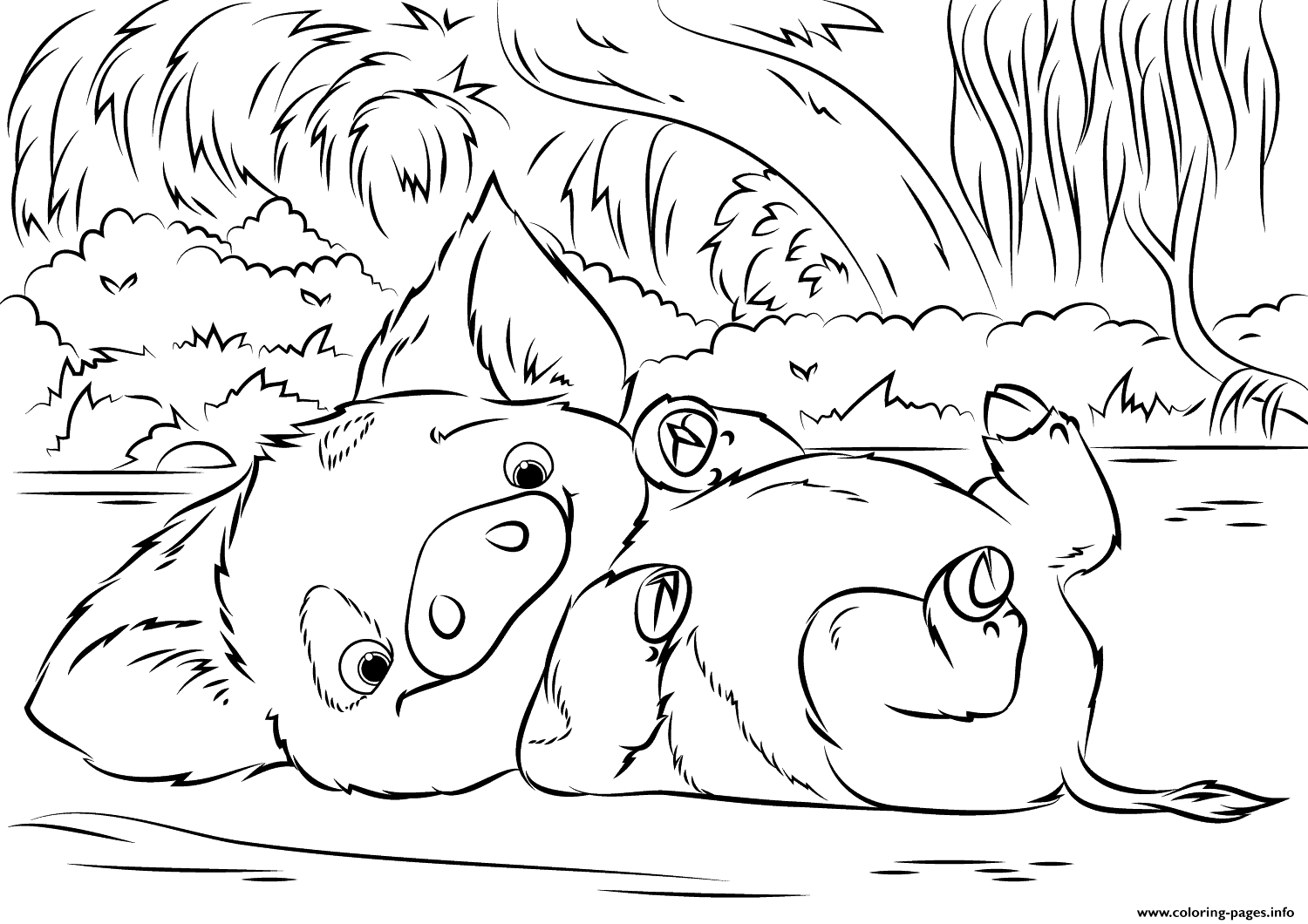 Pua Pet Pig From Moana Disney Coloring
