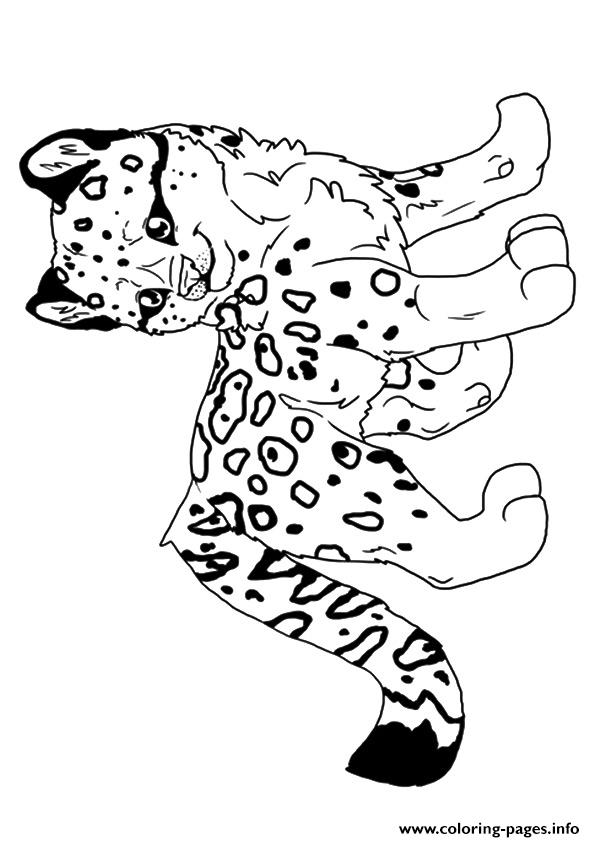 Leopard Hunter A4 Coloring Pages Printable