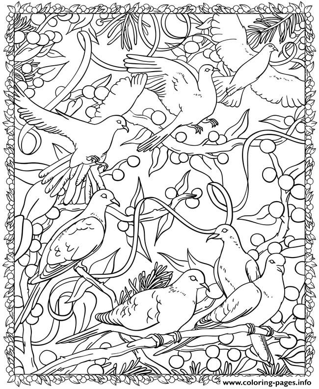 Adult Christmas Birds coloring pages