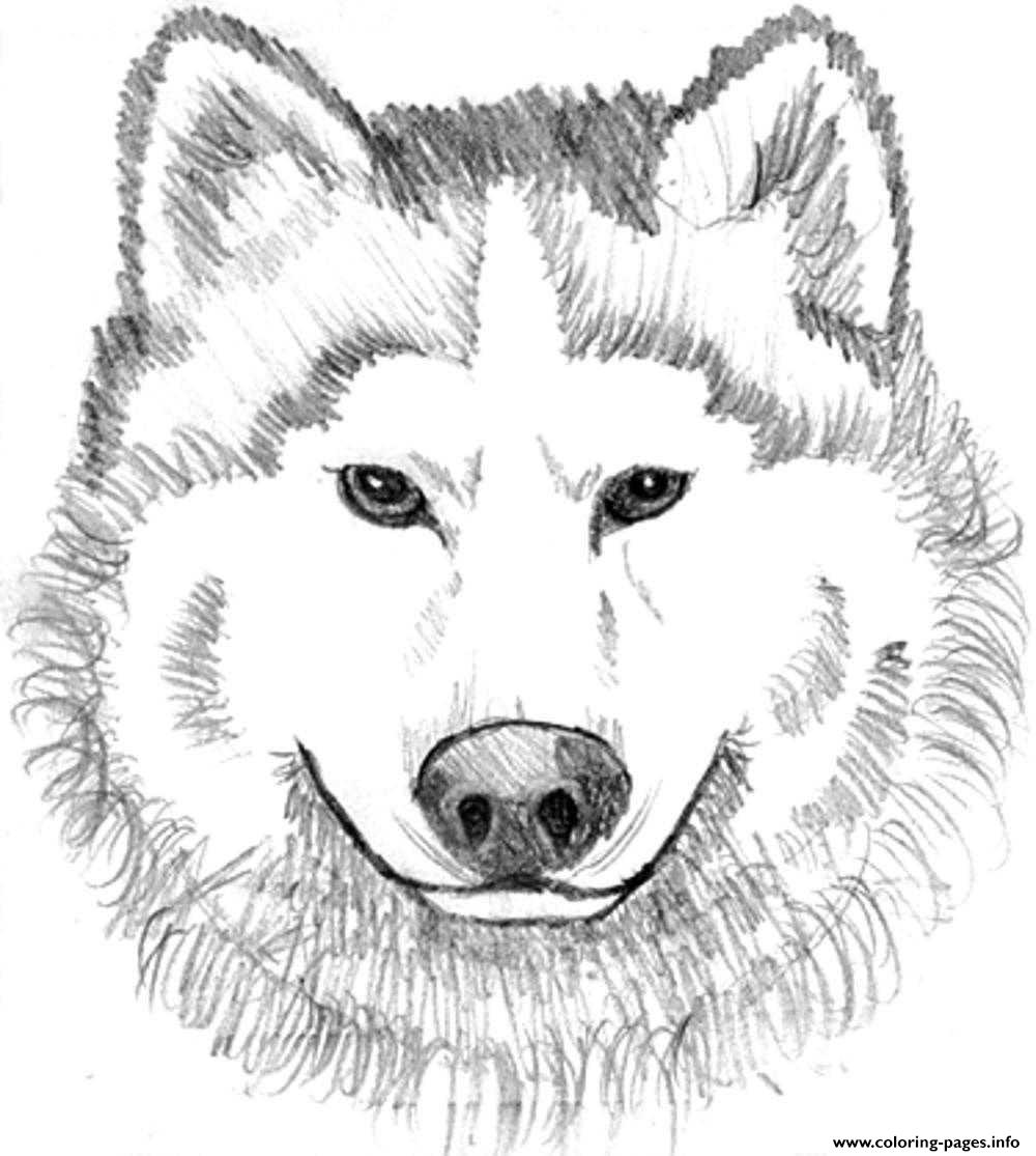 realistic wolf face coloring pages printable