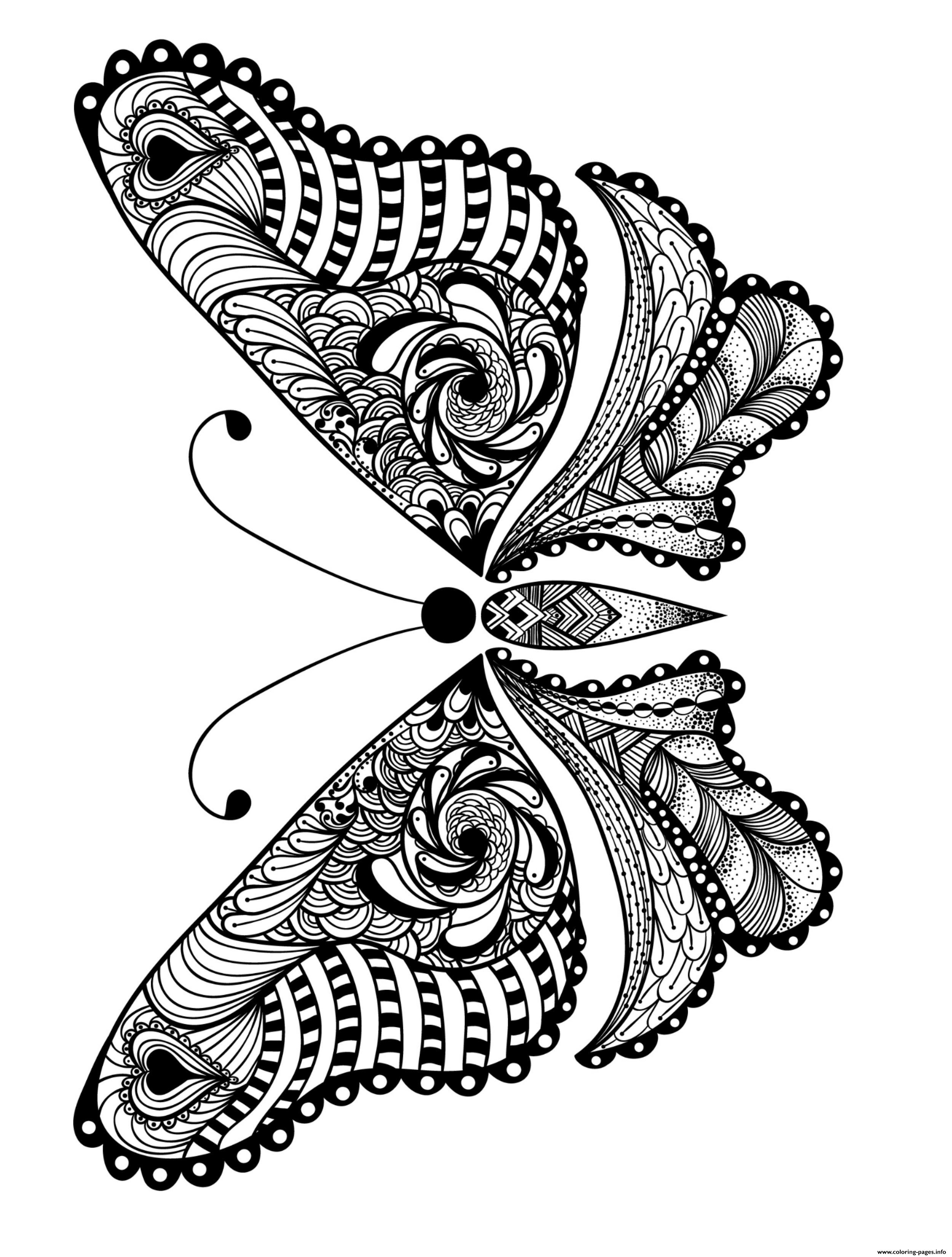 Insect Animal Adult coloring pages