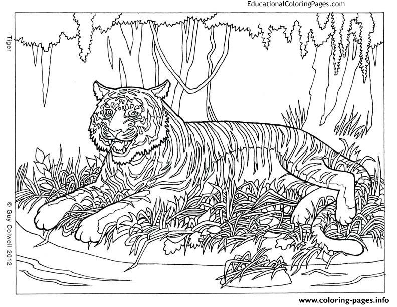 Cool Animal Hard Adult Coloring Pages Printable