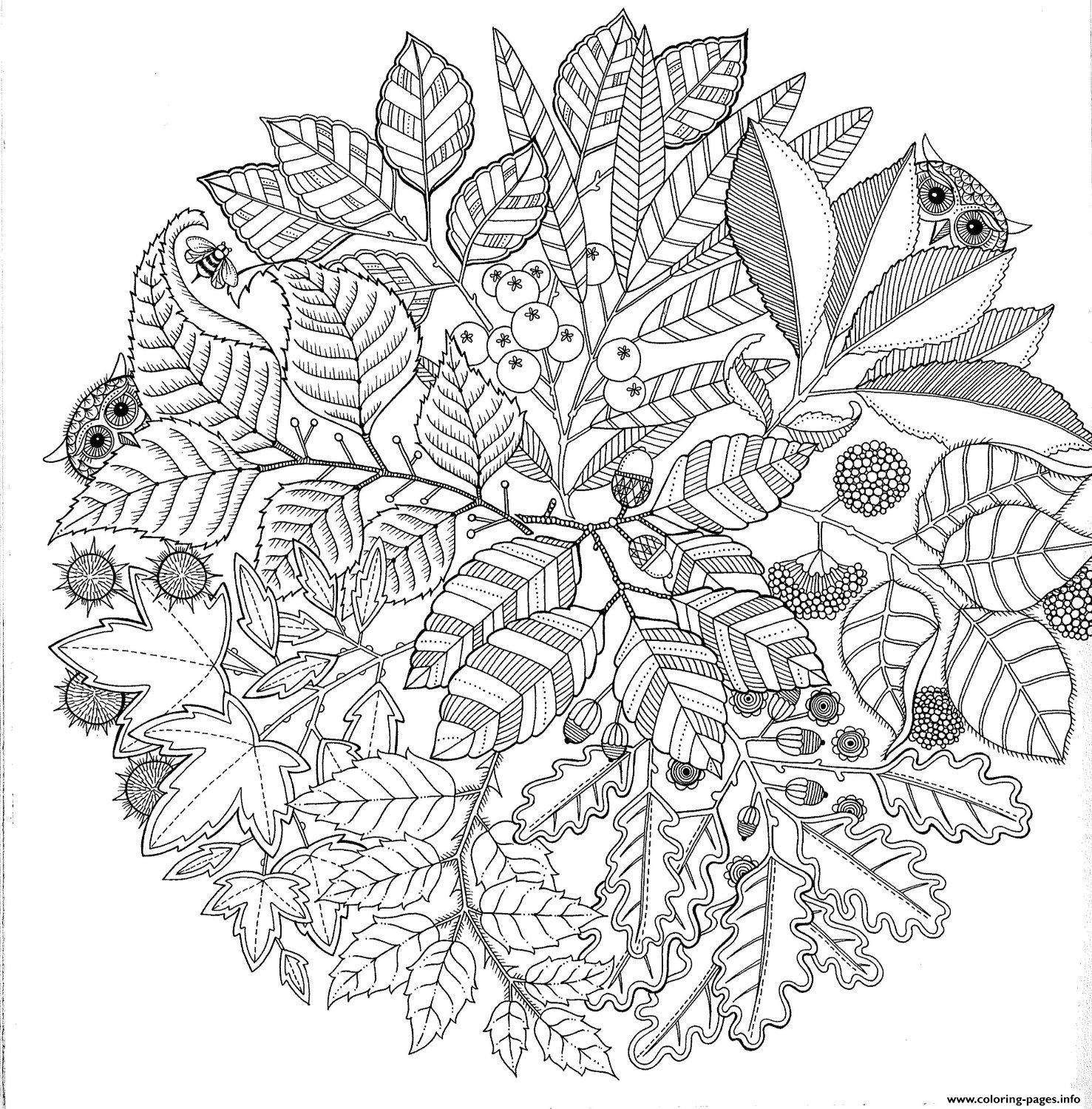 Advanced Hard Mandala Owl Animal Coloring Pages Printable
