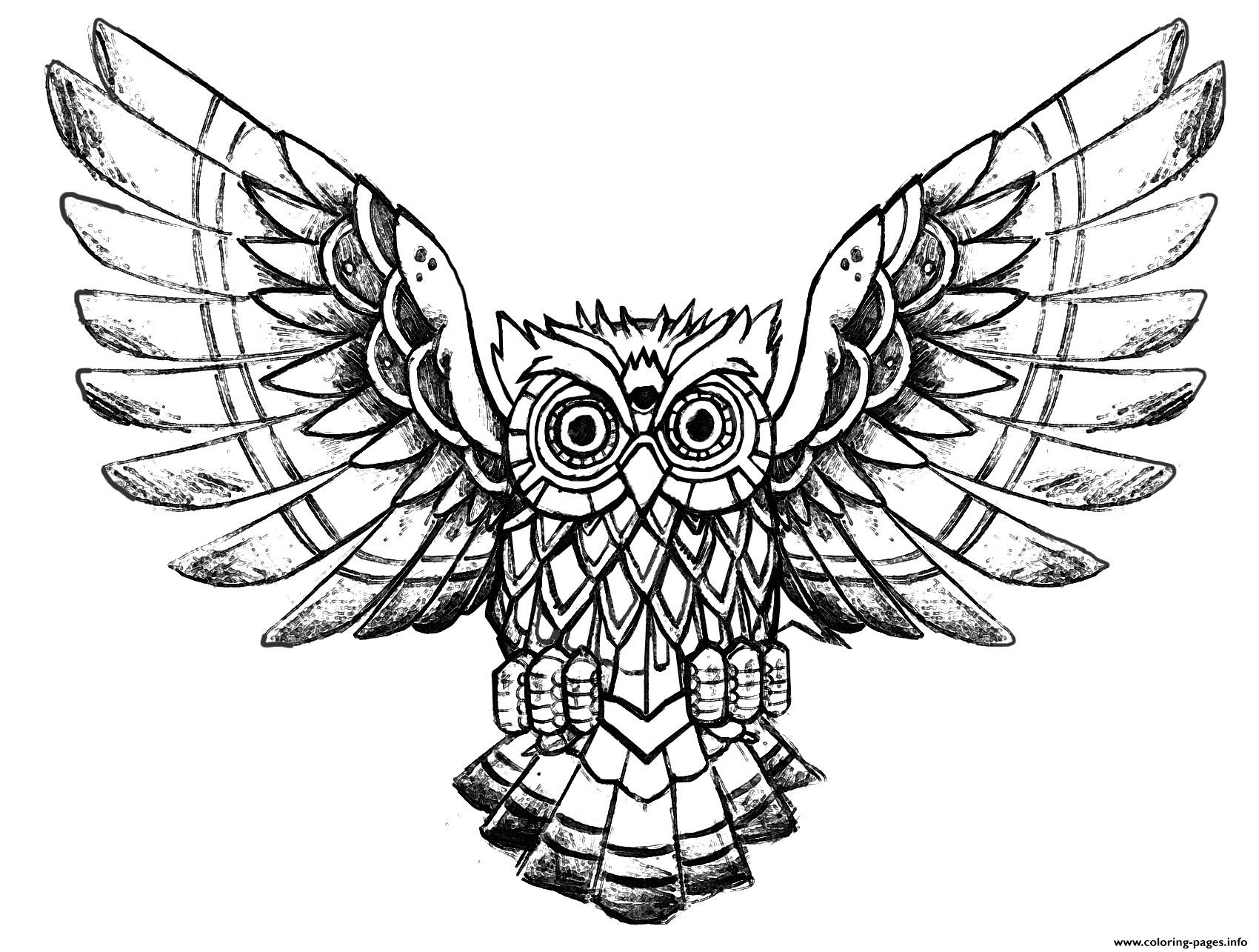 Advanced Owl Raw Drawing Coloring