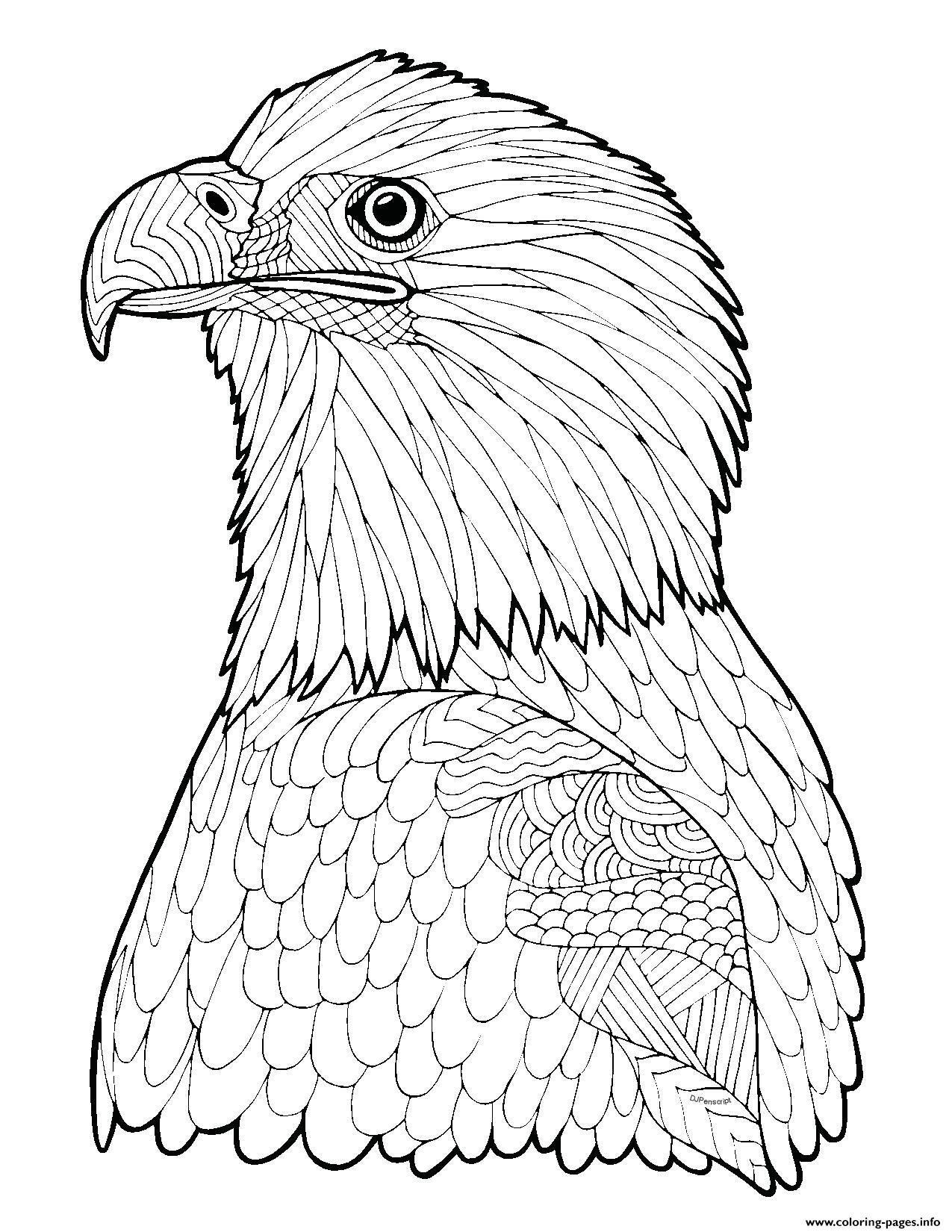 Minecraft Kleurplaat Dieren Bald Eagle Zentangle Page Adult Hard Advanced Coloring