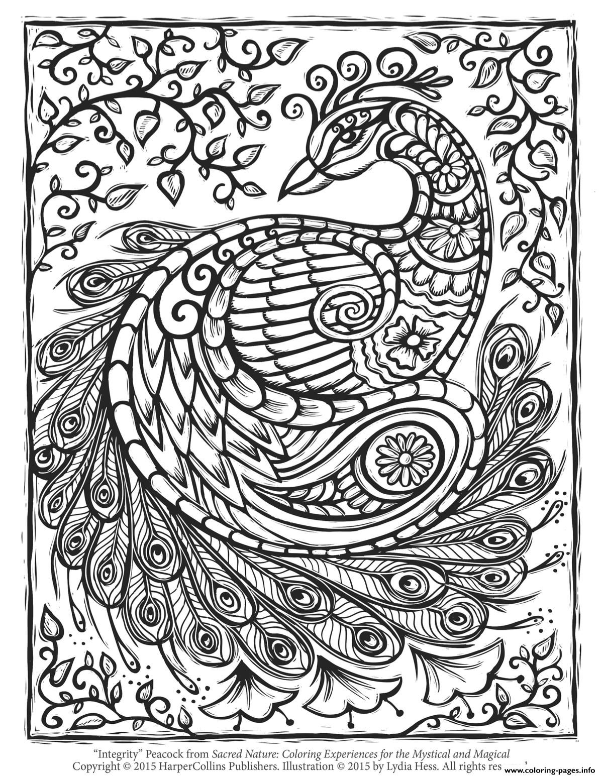 Peacock Adult Hard Advanced Coloring Pages Printable