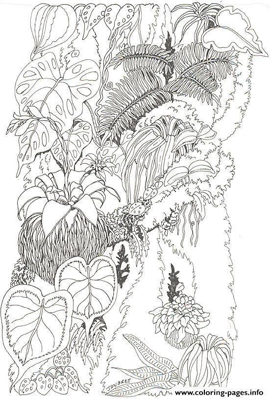 umbrella mural coloring tree trunk 1jan brett coloring