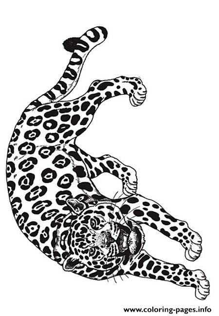 umbrella mural coloring jaguar reverse by jan brett