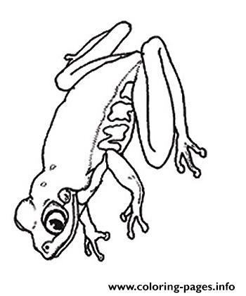 umbrella mural coloring froggie reverse by jan brett