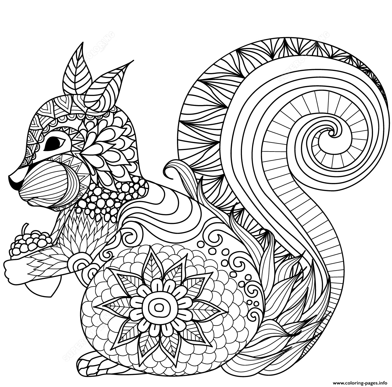 Squirrel Zentangle Adults 1 Coloring