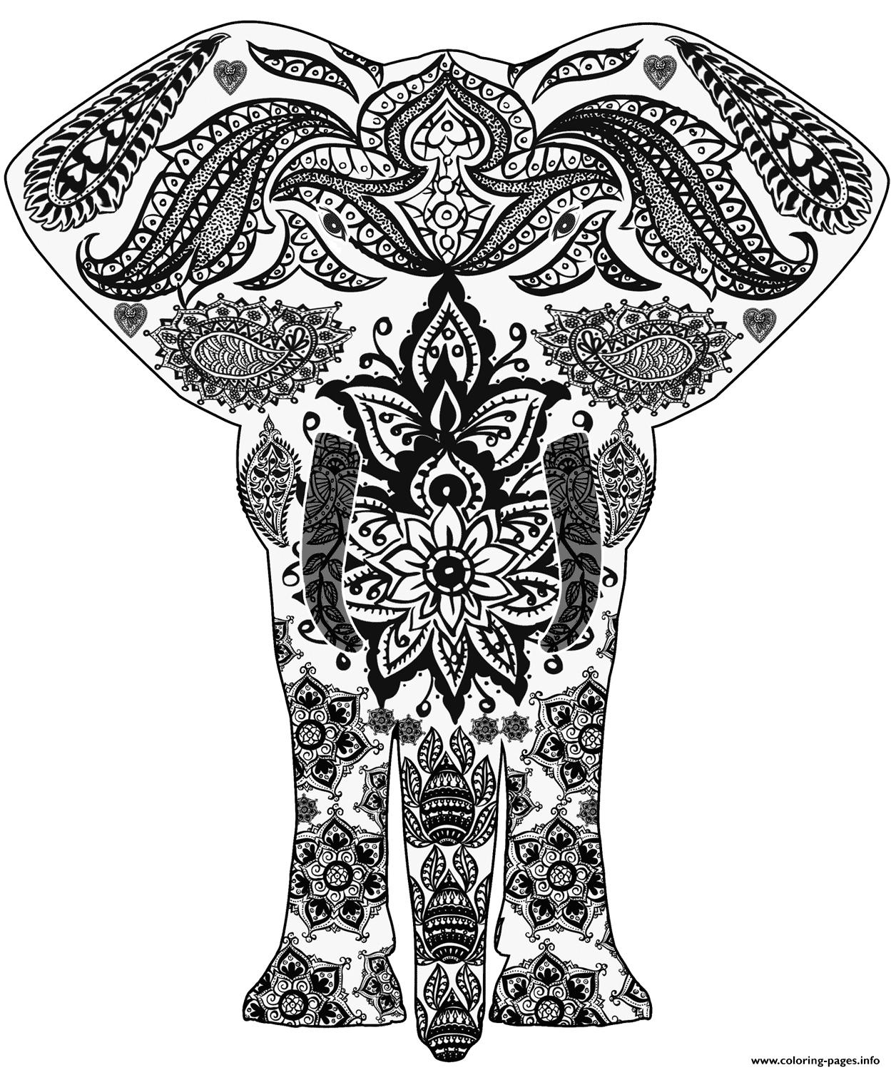 Elephant Zentangle Adults coloring pages
