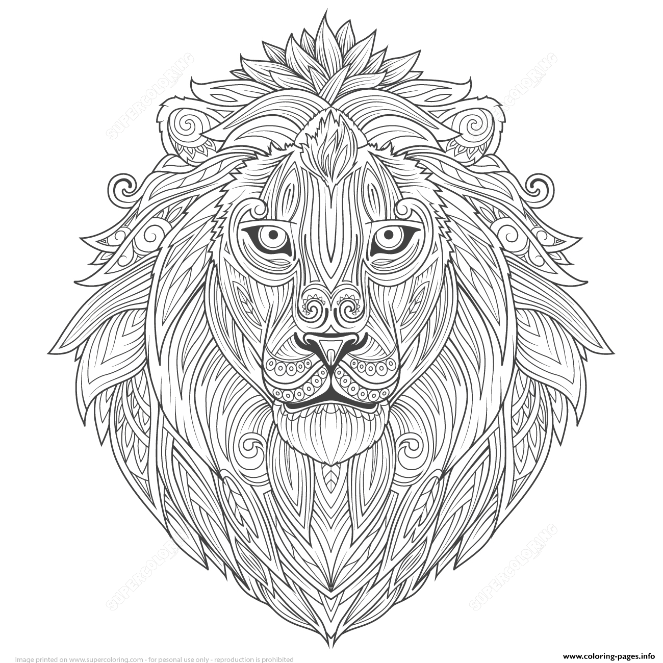 Lion Ethnic Zentangle Adults Coloring Pages Printable