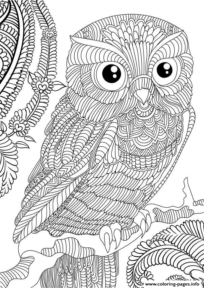 Owl Adult Animal Anti Stress Coloring Pages