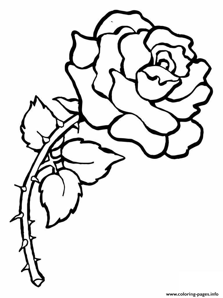 Red Rose Flower Love coloring pages