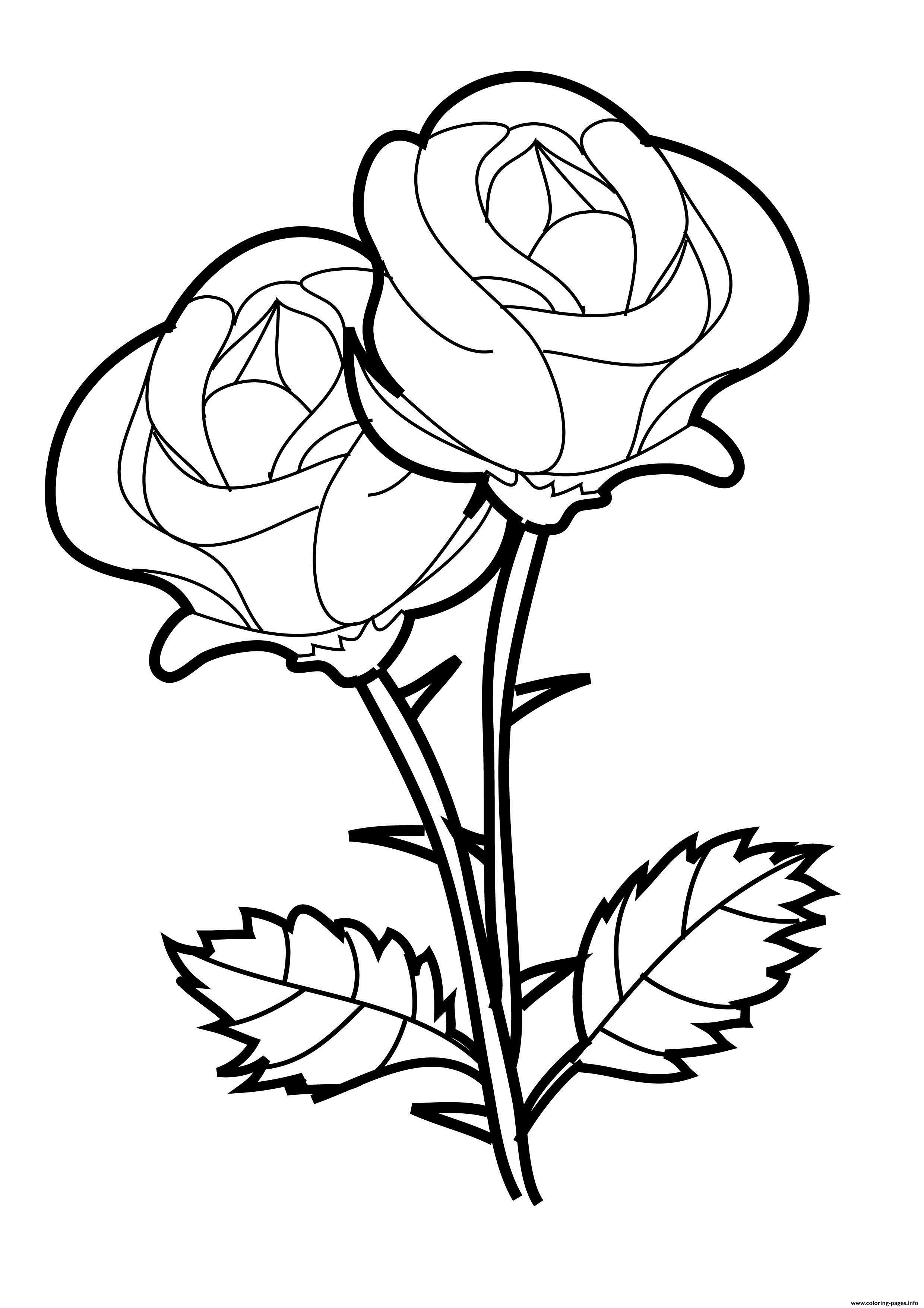 Rose Valentines Day Coloring Pages Printable