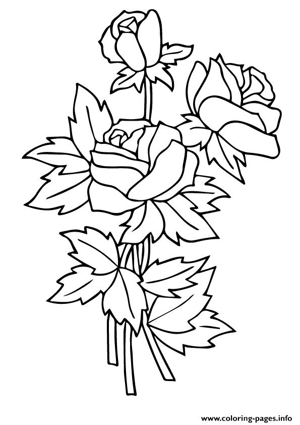 Three Rosas A4 coloring pages
