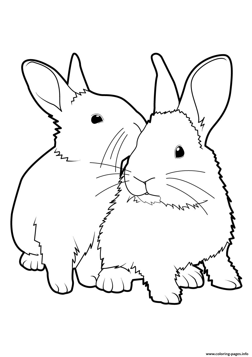 Easter Bunnys Loves Real coloring pages