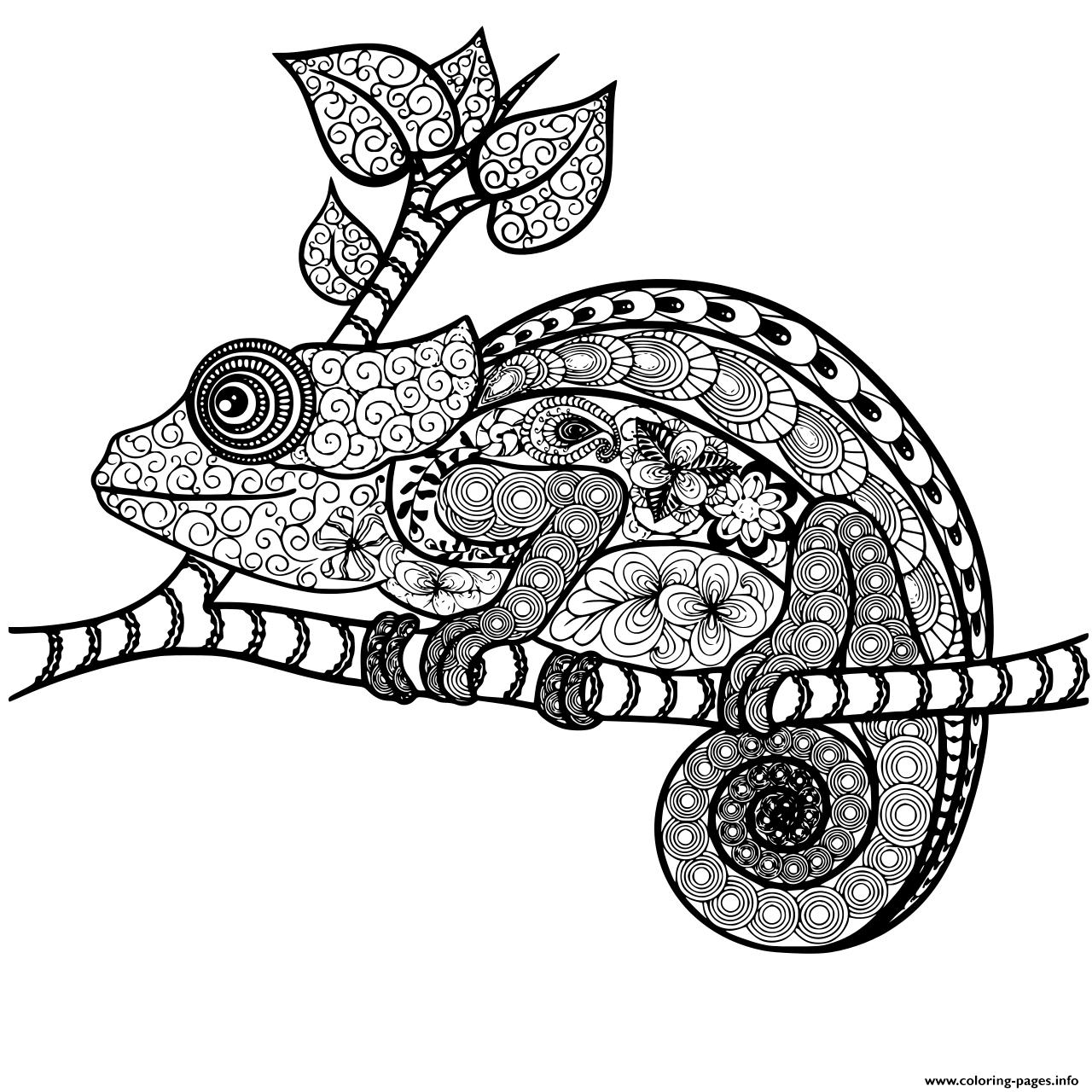 Chameleon Mandala Adult Zentangle Coloring Pages Printable