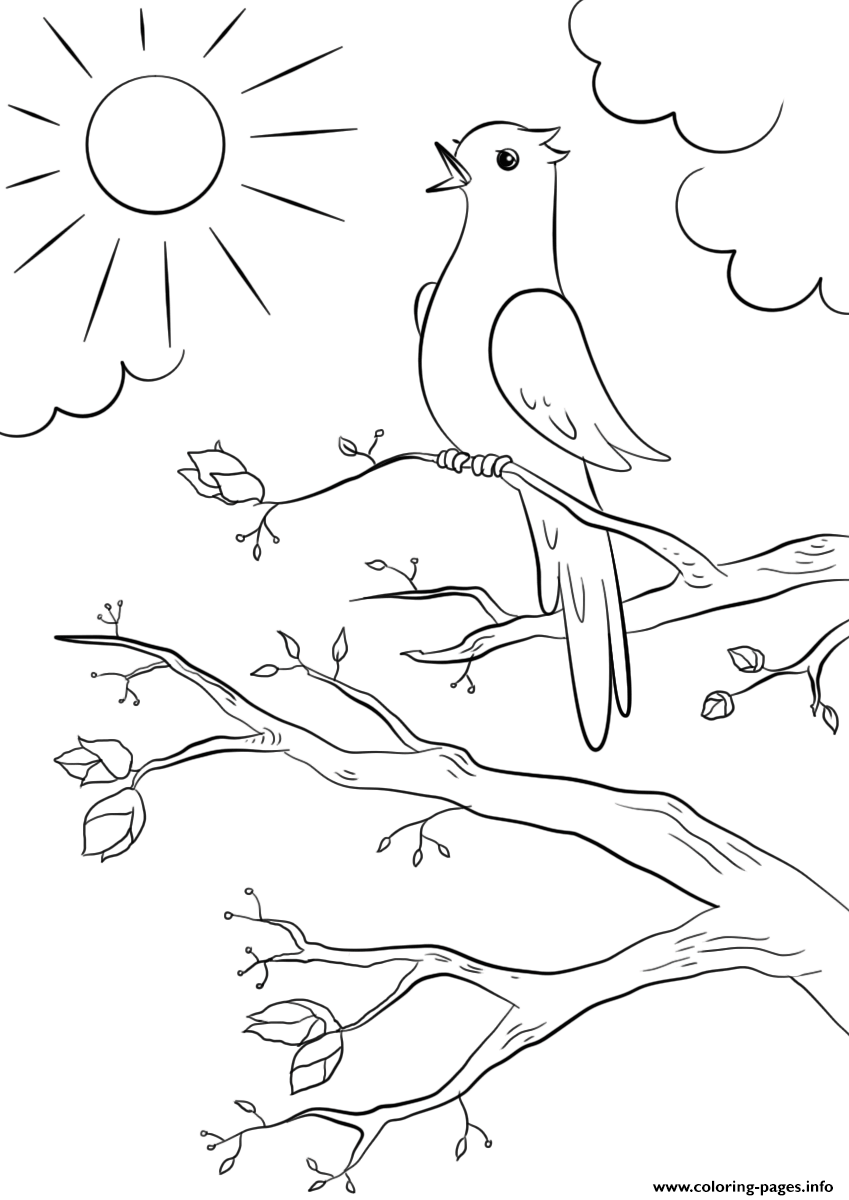 Spring Bird Coloring Pages Printable