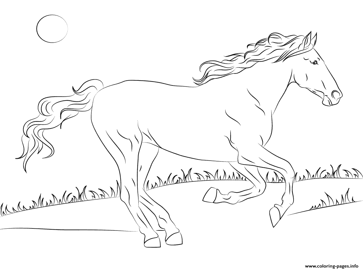 Beautiful Mustang Horse Coloring Pages Printable