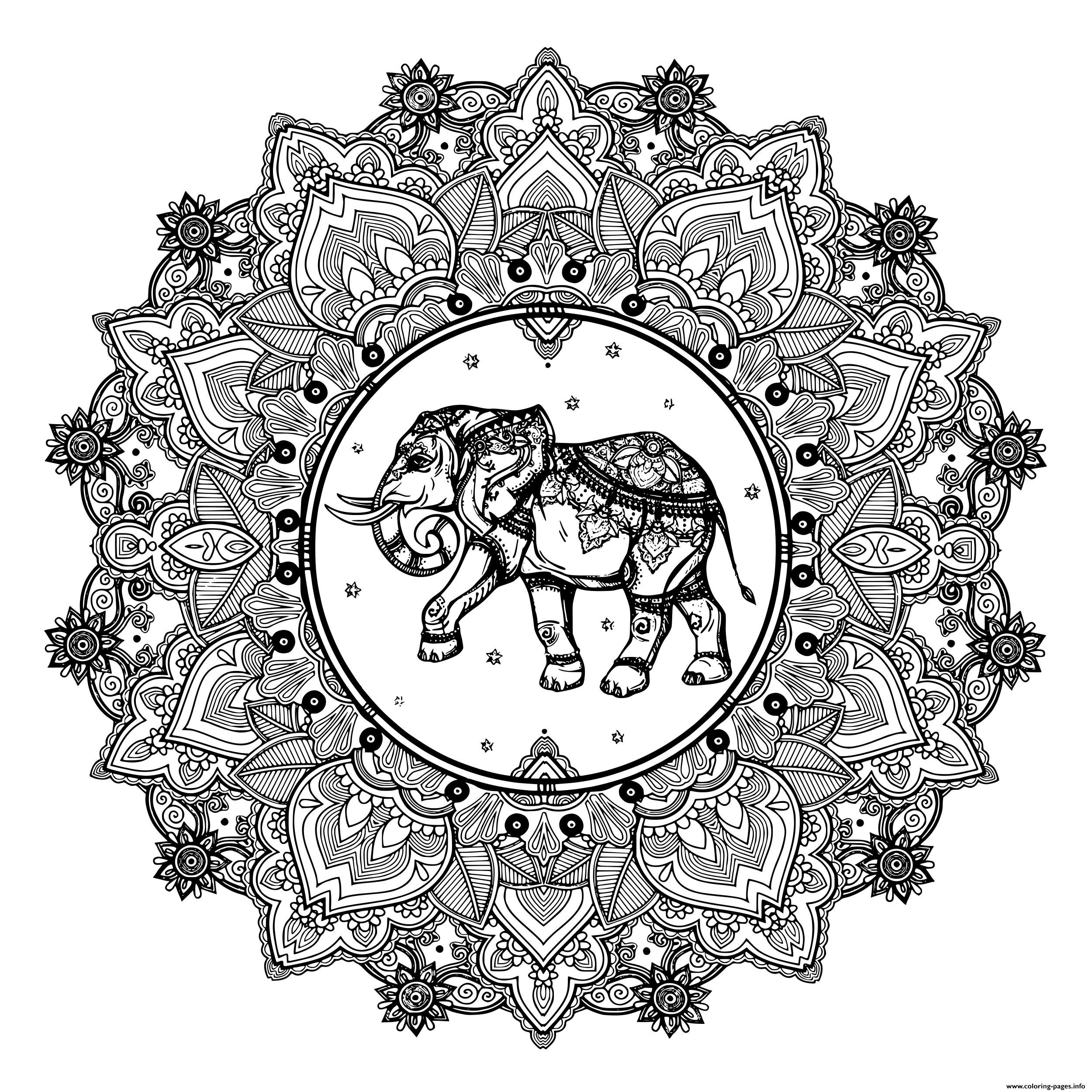 Adult Mandala Elephant India Zentangle Coloring Pages ...