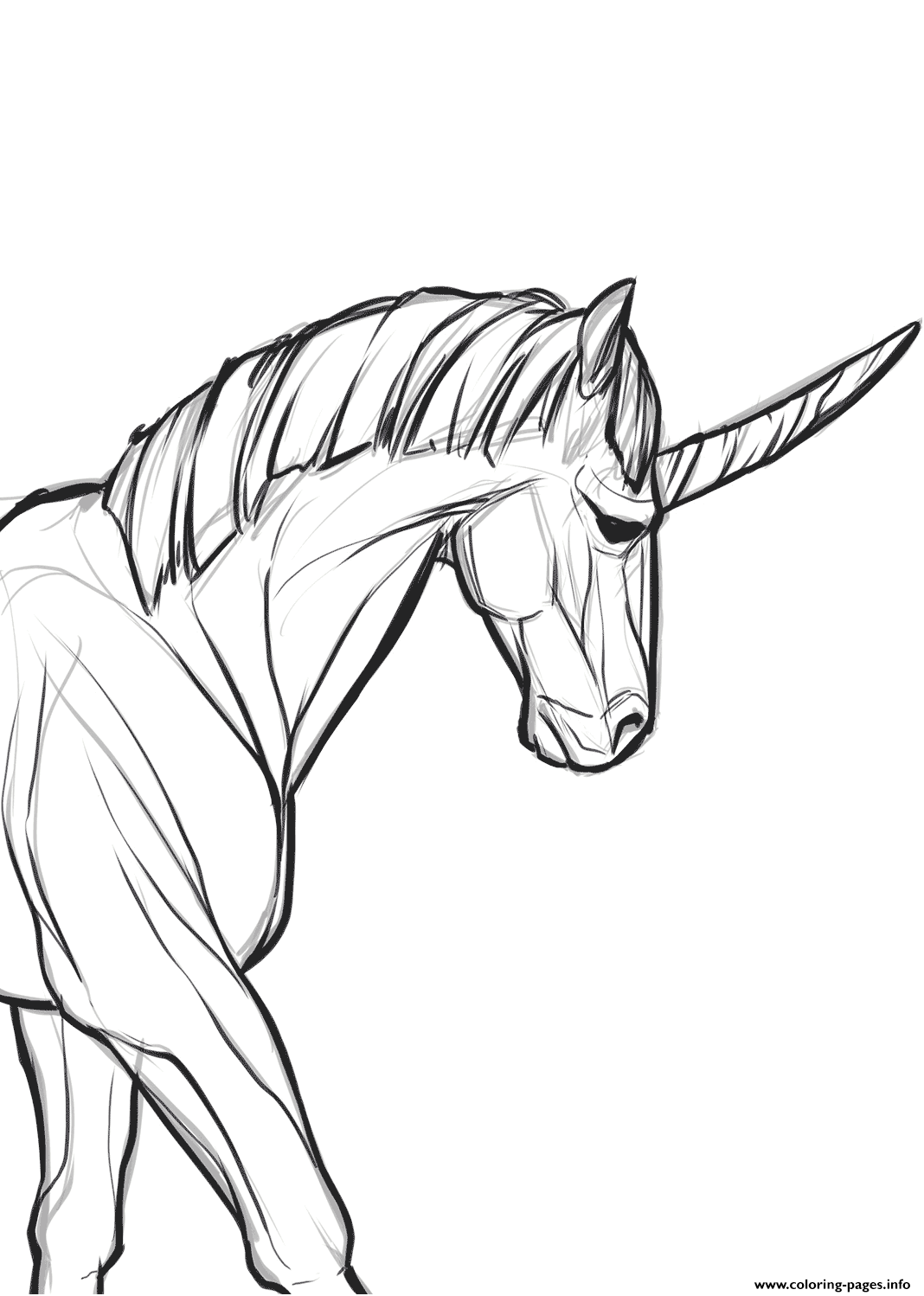 Realistic Real Unicorn Coloring Pages Printable