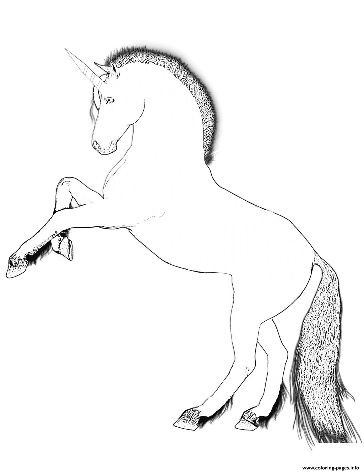 Horse With A Single Straight Horn coloring pages