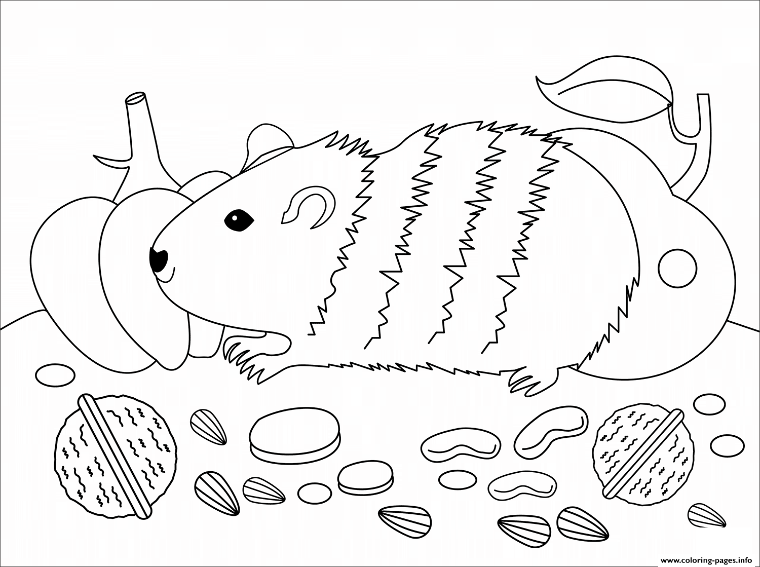 Guinea Pig Animal Simple Coloring Pages Printable